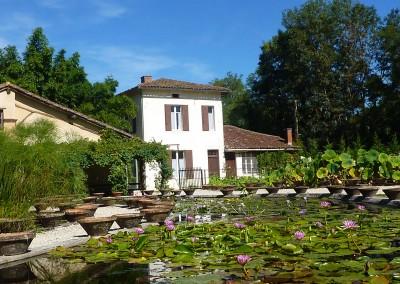 Latour Marliac bassins ©CTD47